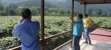 Visita Fincas Bajo Nalón 23-07-2013
