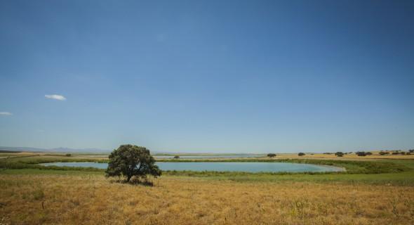 La aplicación de la Huella Ecológica es una oportunidad de diversificación económica y desarrollo sostenible para el mundo rural