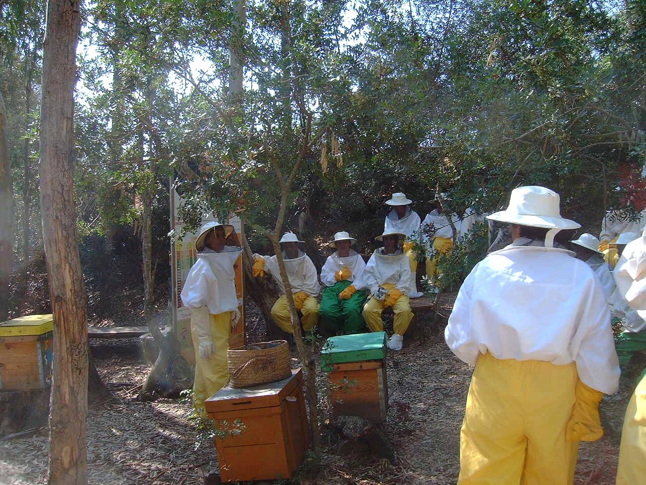 Campo museo de la miel Rancho Cortesano
